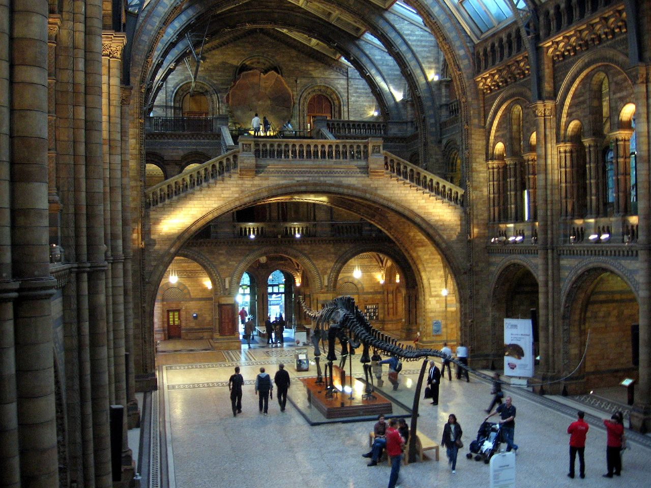Natural History Museum OliverN5 bei flickr